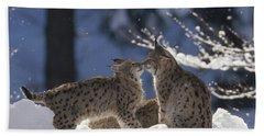 Eurasian Lynx Pair Touching Noses Beach Towel