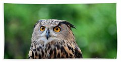 Eurasian Or European Eagle Owl Bubo Bubo Stares Intently Beach Towel