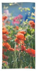 Evening Lights The Poppies Beach Towel