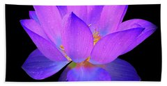 Evening Purple Lotus  Beach Sheet