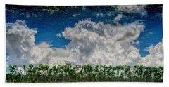 Reflected Everglades 0203 Beach Sheet