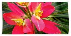 Exotic Red Flower Beach Towel