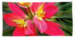 Exotic Red Flower Beach Sheet
