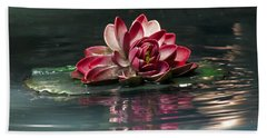 Beach Towel featuring the photograph Exquisite Water Flower  by Lucinda Walter