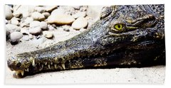 Eye Of The Croc Beach Sheet by Rich Collins