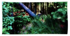 Beach Towel featuring the photograph Fairy Forest by Jamie Lynn