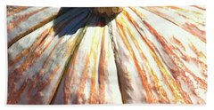 Beach Towel featuring the photograph Fairy Tale Pumpkin by Denyse Duhaime