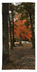 Fall Brings Changes  Beach Towel by Amazing Photographs AKA Christian Wilson