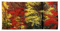 Fall Canopy Beach Towel