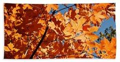 Fall Colors 2 Beach Towel
