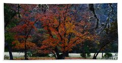 Fall Foliage At Lost Maples State Park  Beach Sheet
