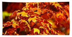 Fall Foliage Colors 14 Beach Sheet