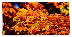 Fall Foliage Colors 16 Beach Sheet