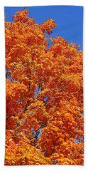Fall Foliage Colors 18 Beach Sheet