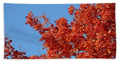 Fall Foliage Colors 20 Beach Sheet