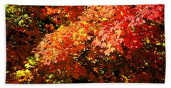 Fall Foliage Colors 21 Beach Sheet