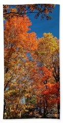 Fall Foliage Beach Sheet by Patrick Shupert