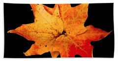 Beach Towel featuring the photograph Fall Leaf Trio by Dee Dee  Whittle