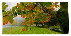 Fall Maple Tree In Foggy Park Beach Towel
