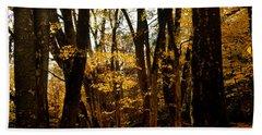 Fall Scene In Bidwell Park Beach Towel