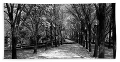 Fall Tree Promenade Landscape Beach Towel