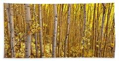 Fall's Golden Light Beach Towel by Steven Reed