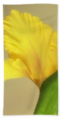 Beach Towel featuring the photograph Fanning Glady by Deborah  Crew-Johnson