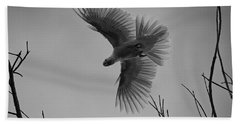 Feathered Flight  Beach Towel by Douglas Barnard