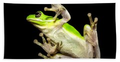 Feathered Frog Beach Sheet