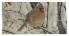 Female Cardinal In The Snow II Beach Sheet