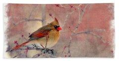 Female Cardinal Portrait Beach Sheet by Dan Friend