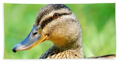 Female Mallard Beach Sheet