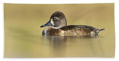 Beach Sheet featuring the photograph Female Ring Necked Duck by Bryan Keil