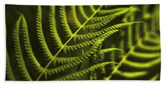 Beach Sheet featuring the photograph Fern by Bradley R Youngberg