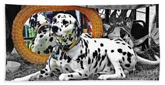 Festival Dog Beach Towel