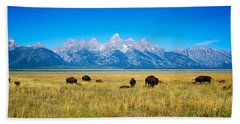 Field Of Bison With Mountains Beach Towel