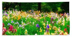 Field Of Iris Beach Towel by Peggy Franz