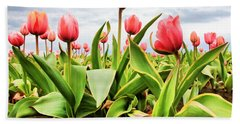 Beach Towel featuring the photograph Field Of Pink Tulips by Athena Mckinzie