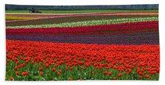 Field Of Tulips Beach Towel by Jordan Blackstone