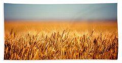 Field Of Wheat Beach Towel