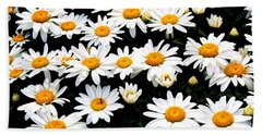 Fields Of Daisies Beach Towel