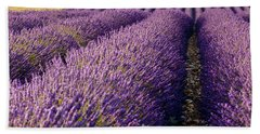 Fields Of Lavender Beach Towel