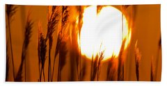 Fiery Grasses Beach Sheet