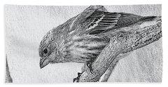 Finch Digital Sketch Beach Towel