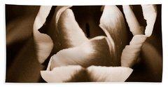 Fine Art - Tulip Beach Sheet