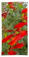 Fire Flowers Beach Sheet