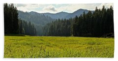 Fish Lake - Open Field Beach Towel by Laddie Halupa