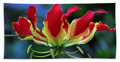 Beach Sheet featuring the photograph Flame Lily II by Larry Nieland