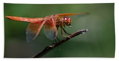 Flame Skimmer Dragonfly Beach Towel