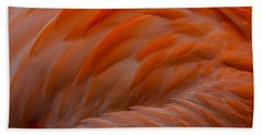 Flamingo Feathers Beach Towel by Michael Hubley